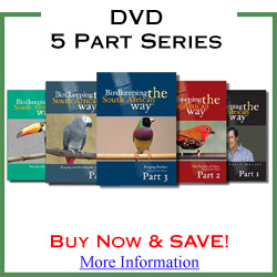 DVD 5 Part Series