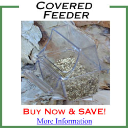 Covered Feeders