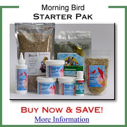 Morning Bird Starter Pack